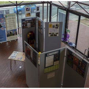 Maidenhead Arts Council Library Exhibition